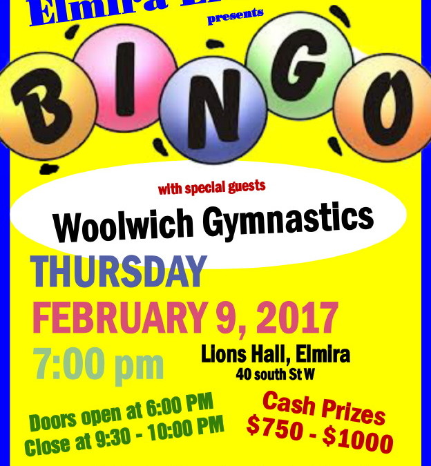 BINGO fundraiser February 9th!